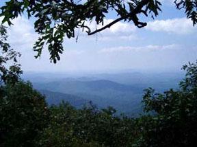 View from Springer Mountain, GA